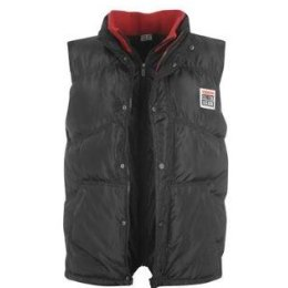 Vision vest
