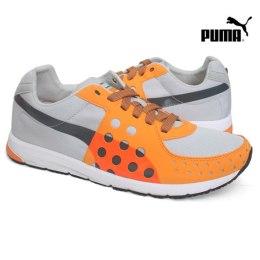 Puma kingad