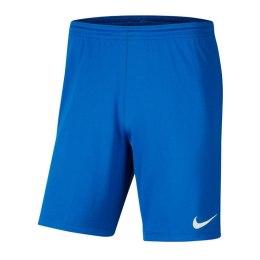 Nike lühikesed püksid